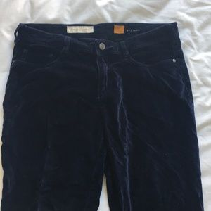 Anthropologie pilcro serif blue velvet pants
